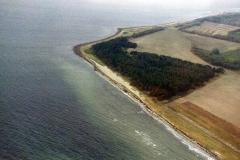 Lagerplatz an der Waldkante auf der Insel Veirö